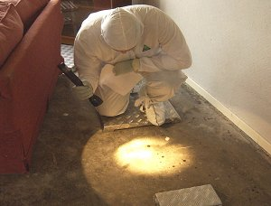 Man in protective clothing kneels shining light on carpet