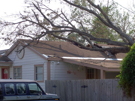 Large tree broken into brown roof following Hurricane Katrina