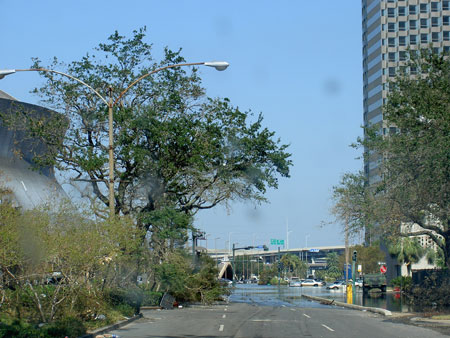 Street view of tree damage and receding water from Hurricane Katrina